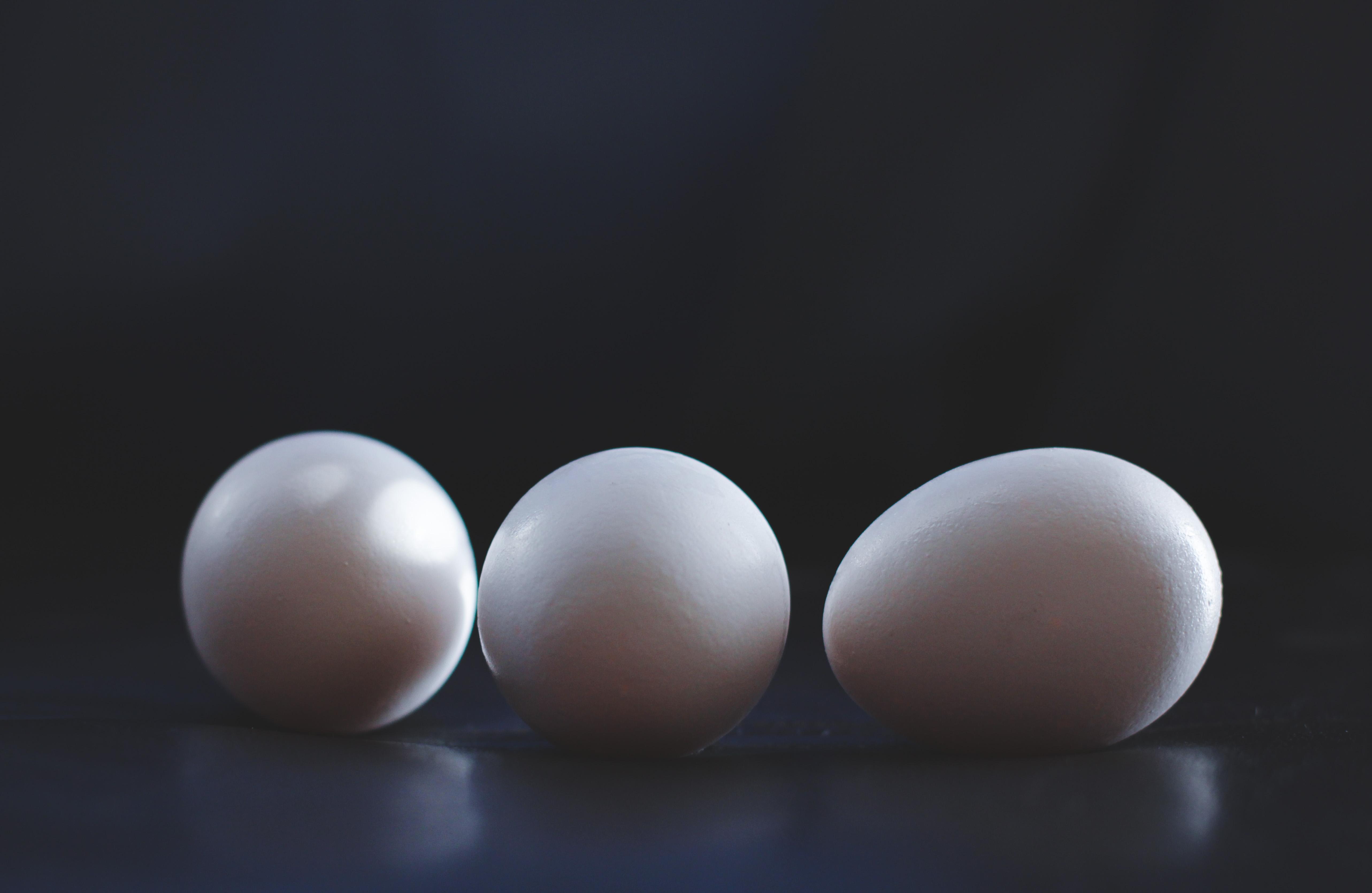 Hope You Enjoyed The Dramatic Egg Photos