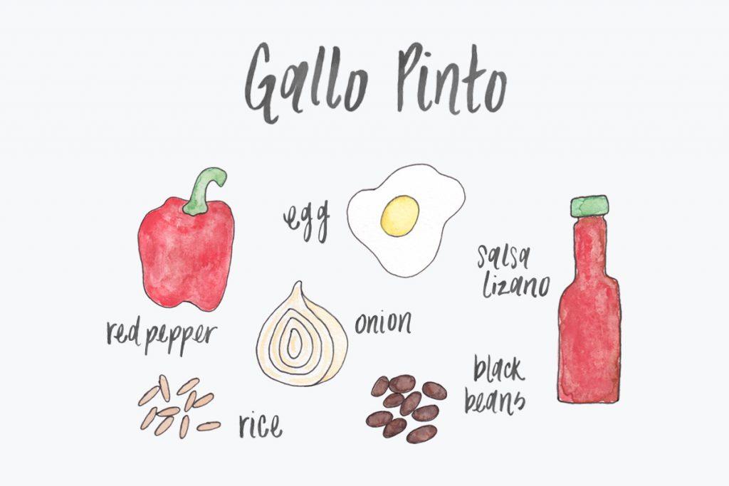 Gallo Pinto Recipe Costa Rica
