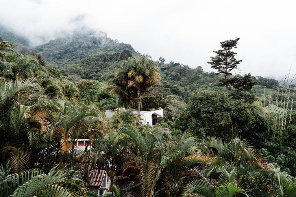 Escazu mountainside