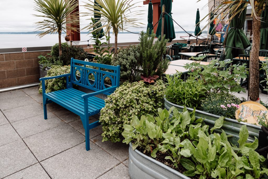 seattle pike place market rooftop gardenseattle pike place market rooftop garden how to plan the best seattle trip